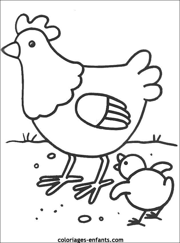 Coloriage d 39 oiseaux imprimer de coloriages enfants animaux plumes poulette - Dessin enfant a imprimer ...