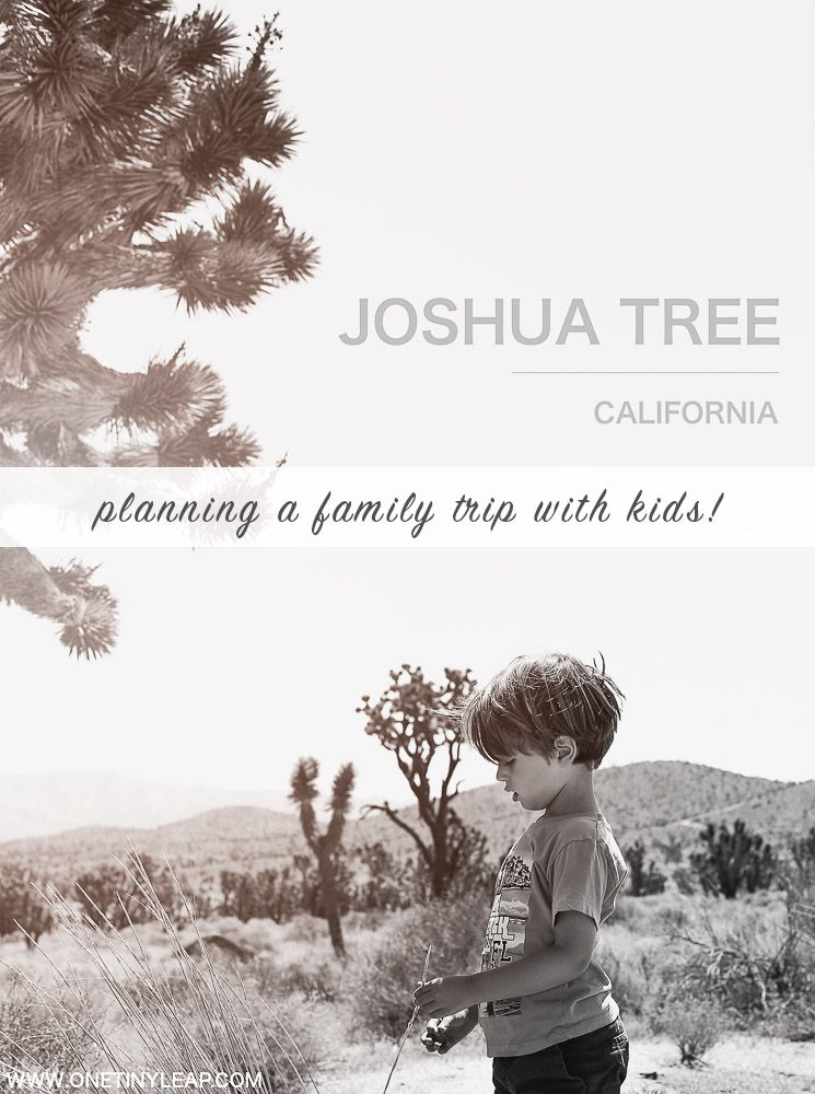 Planning a Family Trip to Joshua Trip National Park.  #JoshuaTree #FamilyTravel #TravelBlogger