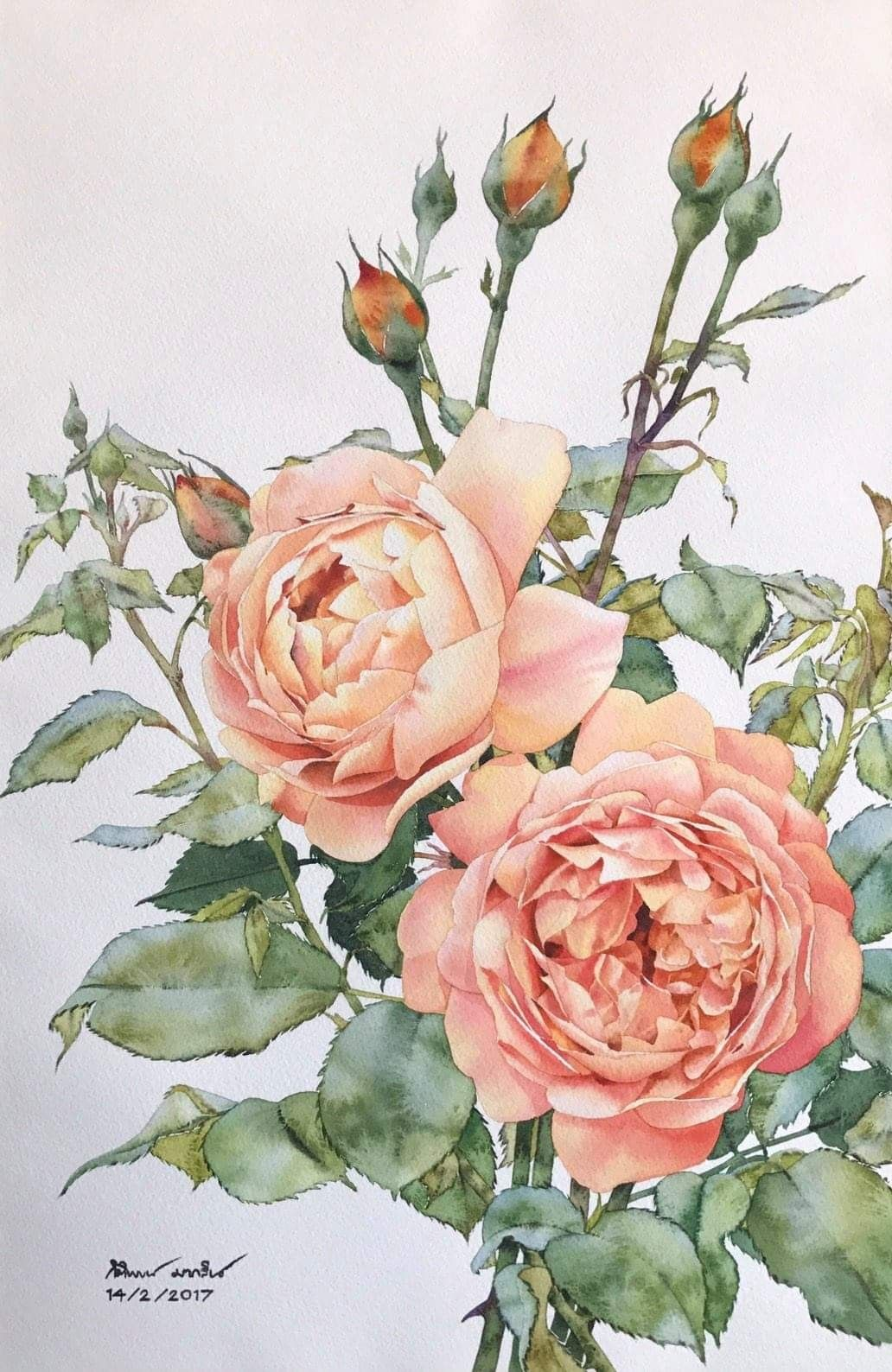 Kitipong Maksin  Rose painting, Flower painting, Floral watercolor