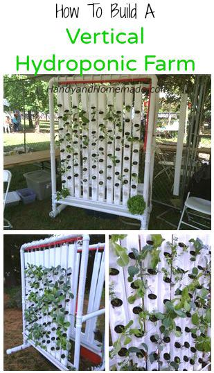 Hydroponics · 10 Do It Yourself Trick For Showing Your Creativity