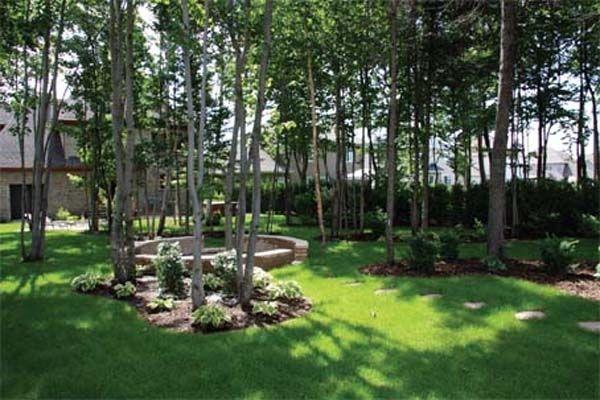 Am nagement paysage en foret recherche google for Amenagement jardin ombre