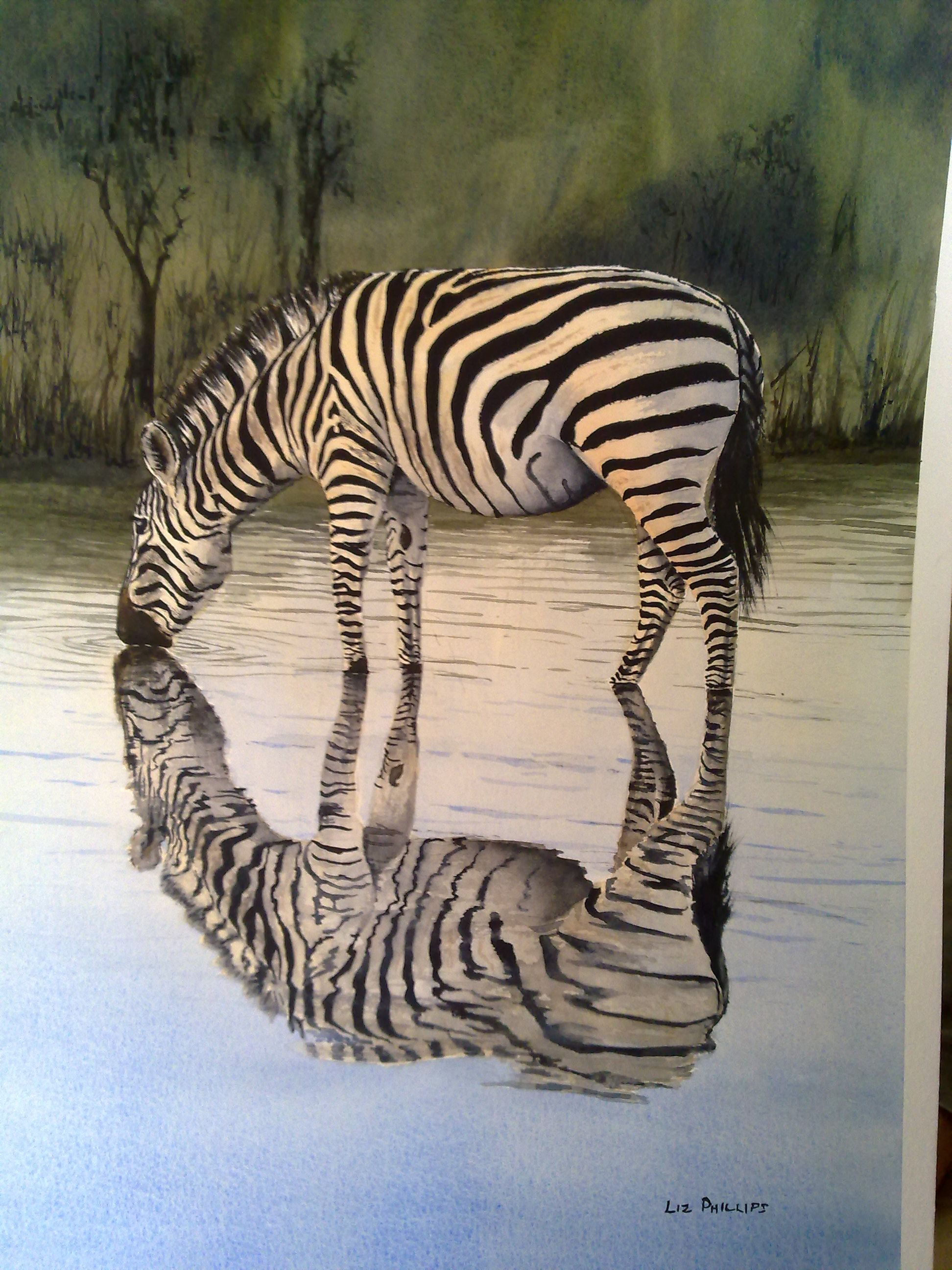 One of my best so far - Zebra in the reflection series