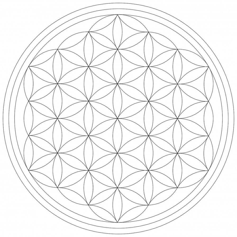 Blume des Lebens - Leinwand Malvorlage - Leinwandbild auf