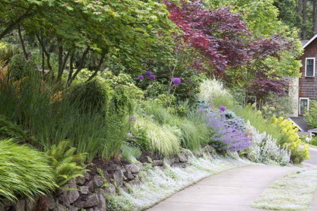 Hangbepflanzung Naturnah Zierstarucher Du Und Dein Garten Garten