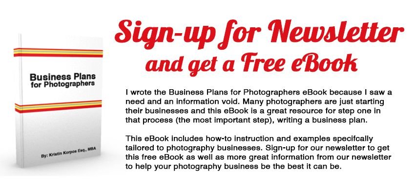 Business Plans for Photographers - Free eBook with how to write a - photography business plans
