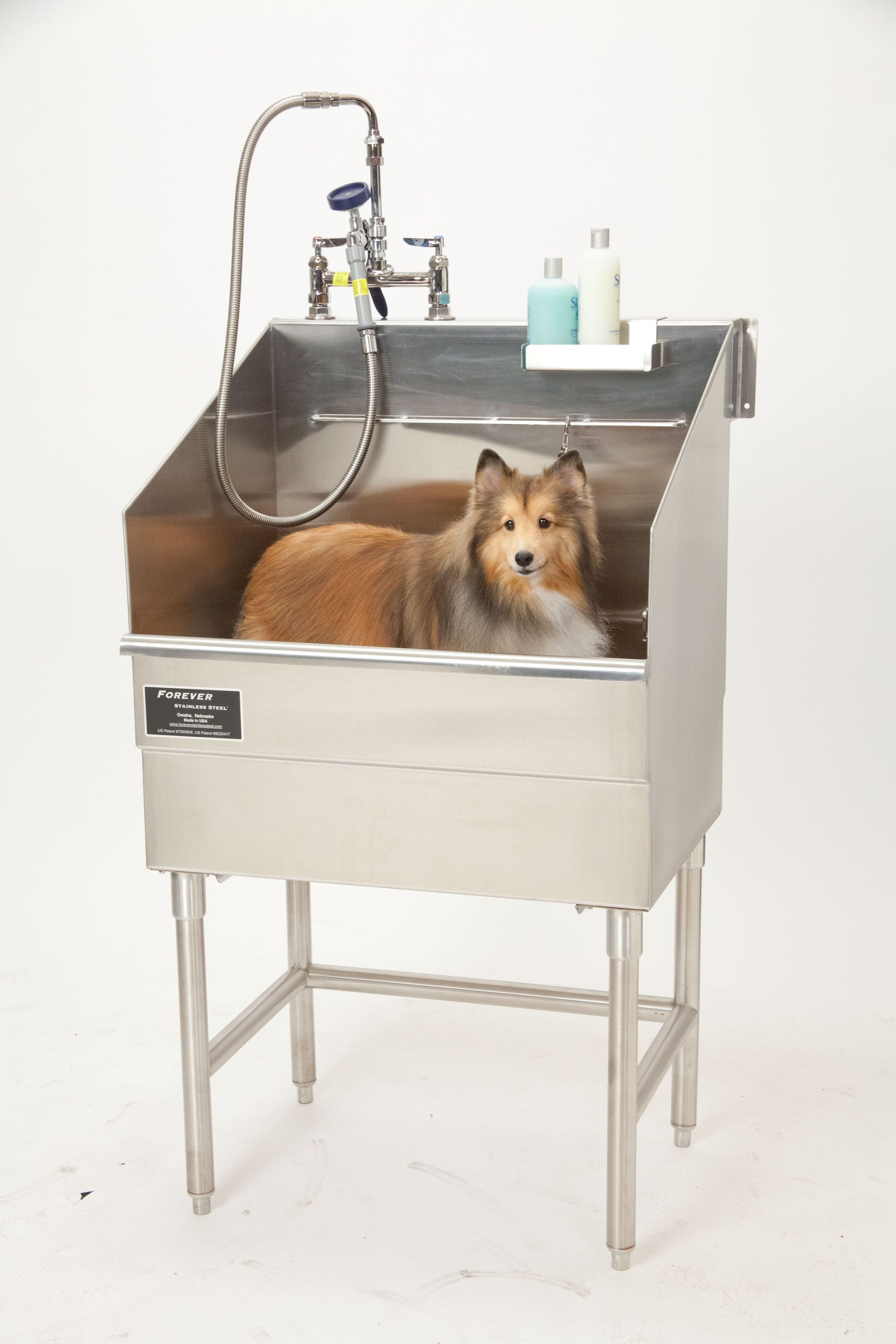 Expect The Pet Friendly Design Trend To Continue In 2015 Dog