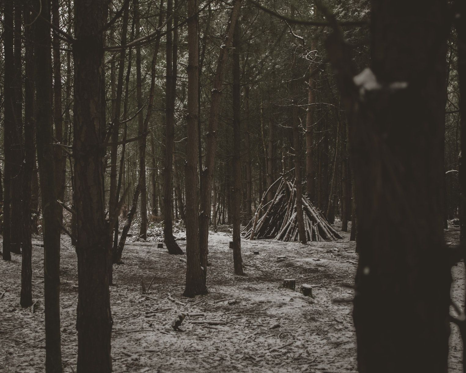 Pin By Willow Wilson On Scandinavian Horror Aesthetic Photo Bloodborne Game Nature