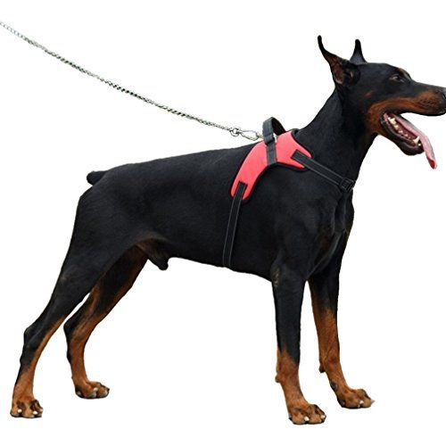 Hiado Adjustable No Pull Dog Harness With Handle For Jumping