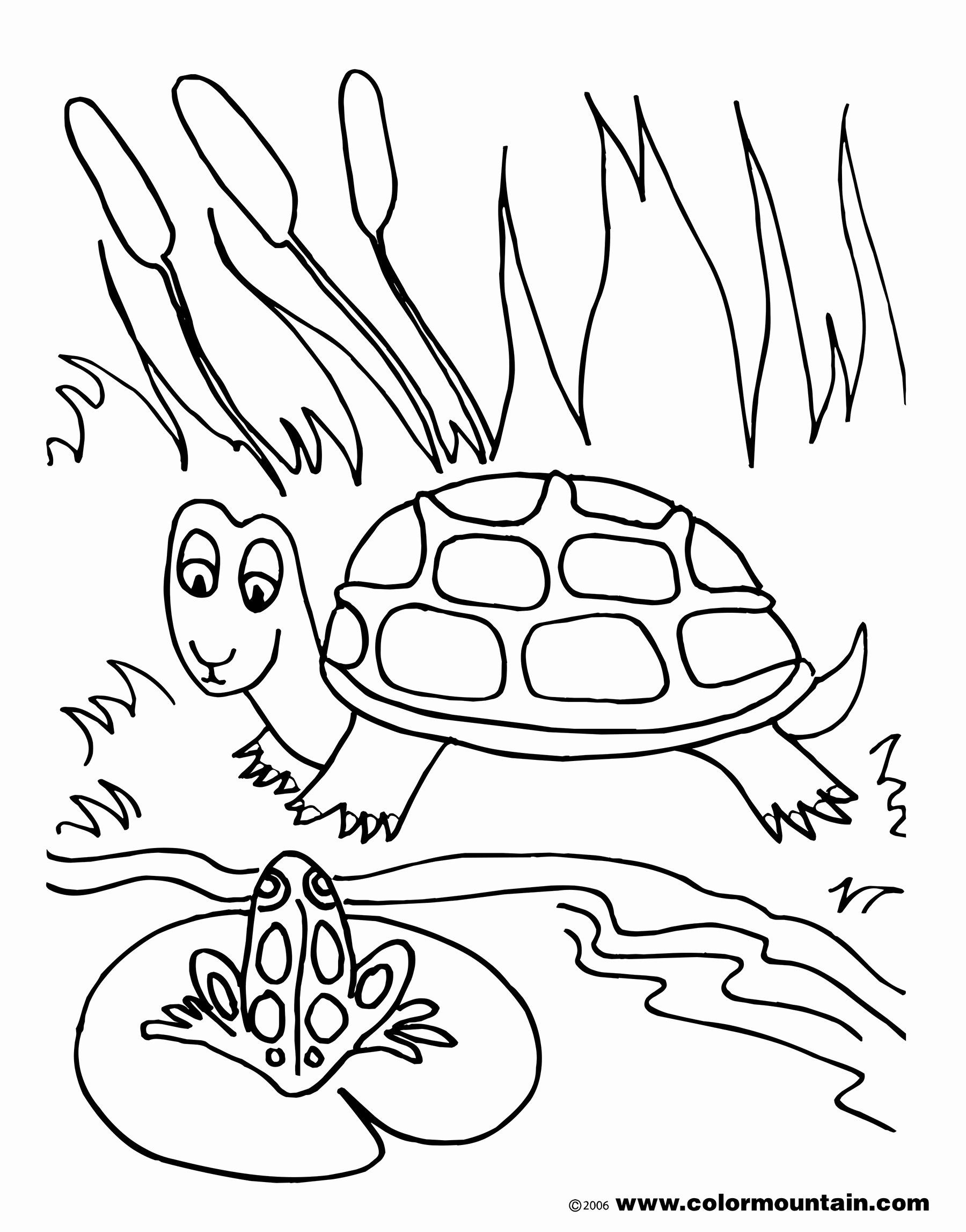 Ocean Habitat Coloring Pages Fresh Sea Turtle Printable Coloring Pages At Getcolorings Turtle Coloring Pages Frog Coloring Pages Fish Coloring Page