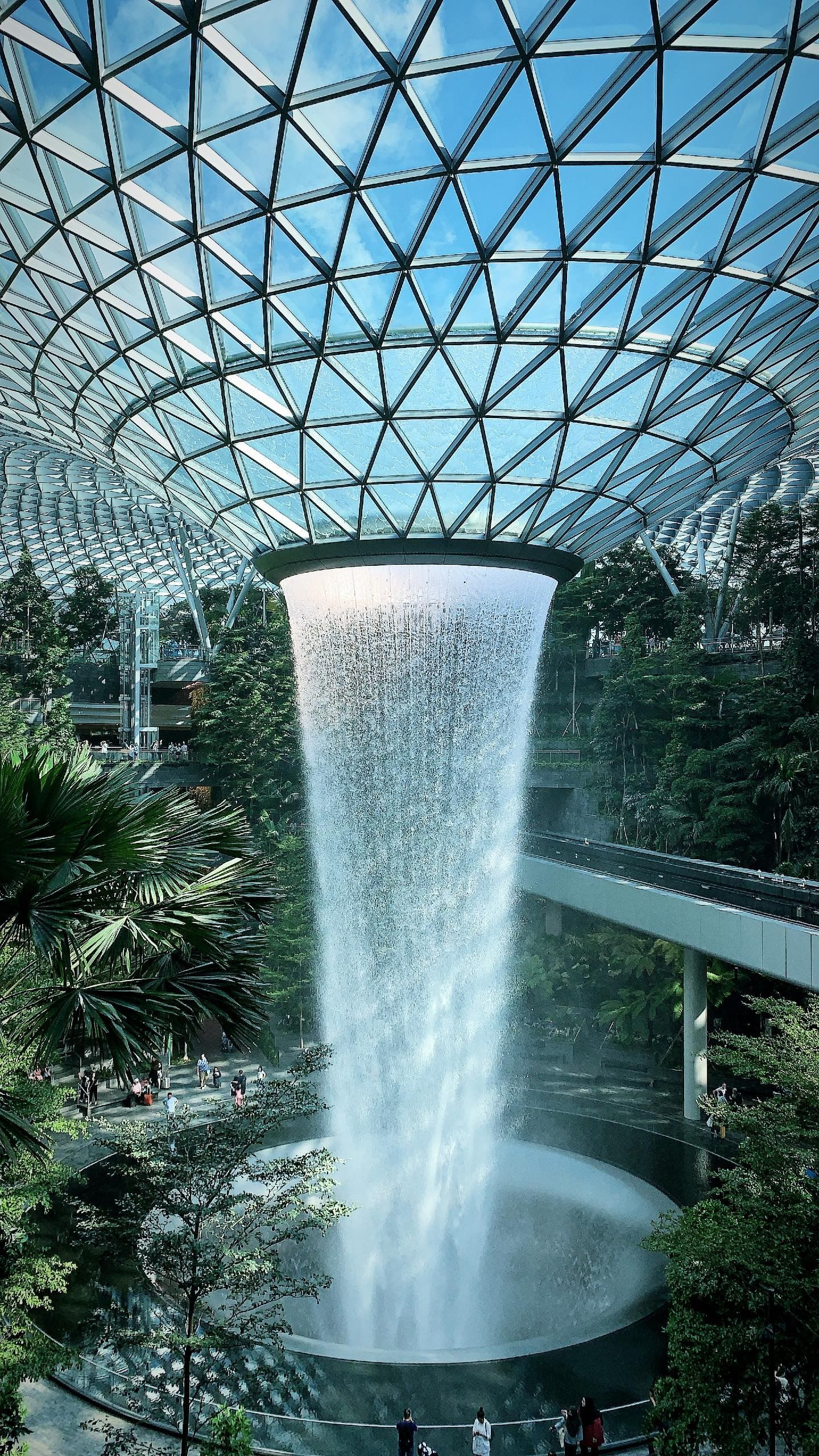 Jewel Changi Airport Container Gardening Flowers Container