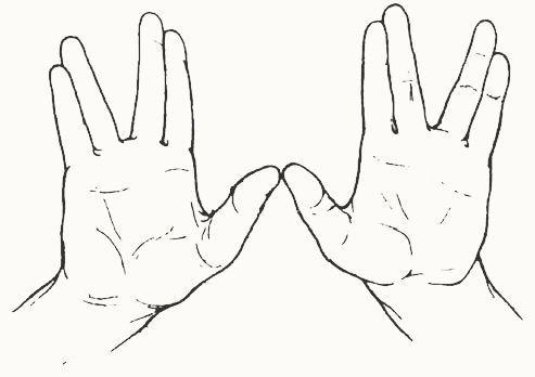 Hands Bendicion Sacerdotal Jpg 493 348 Dedos De La Mano Significas Mucho Para Mi Manos