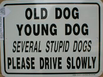 old dog ...young dog ...lol Not real nice... but still, pretty funny- and maybe just enough to get someone to slow down a bit