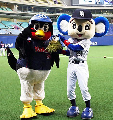 つば九郎が20歳誕生日 ドアラもお祝い 野球 マスコット ドアラ