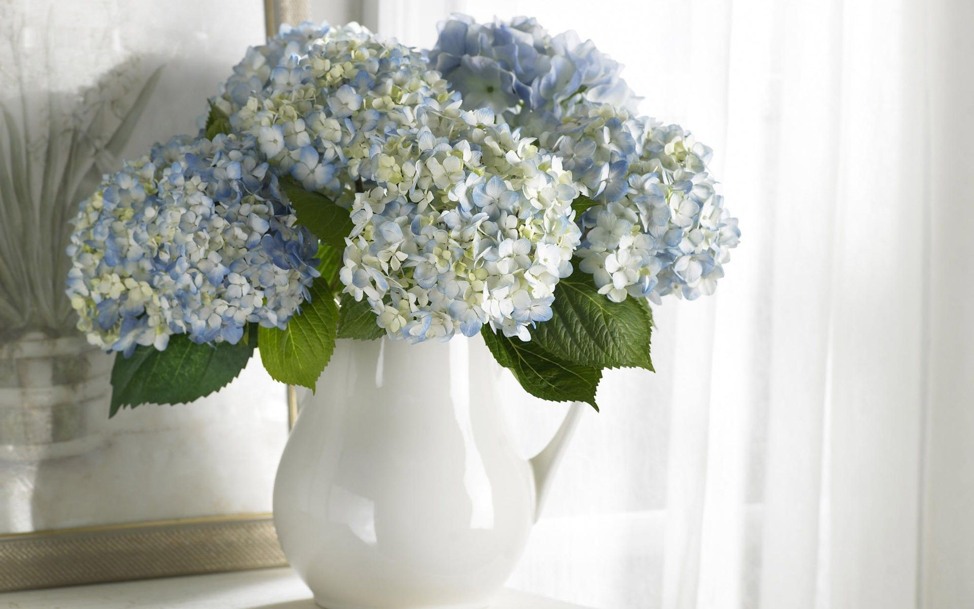 Flower vase licac bouquet flowers white blue cleanliness flower vase licac bouquet flowers white blue cleanliness reviewsmspy