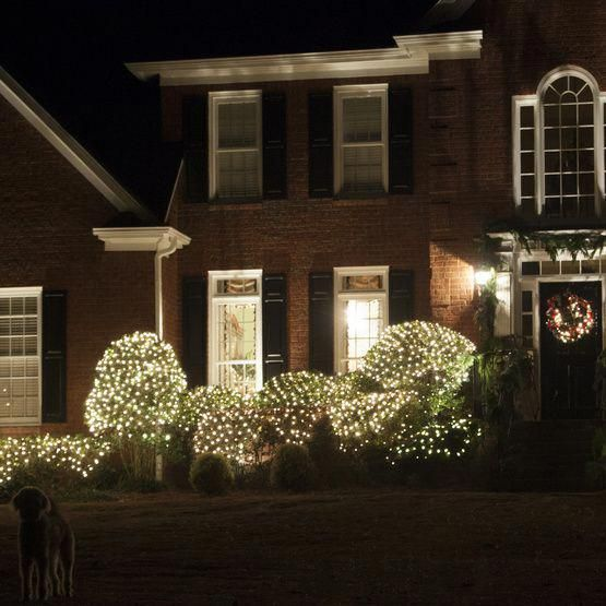 4' x 6' Net Lights - 150 Clear Lamps - Green Wire #christmaslights - 4' X 6' Net Lights - 150 Clear Lamps - Green Wire #christmaslights