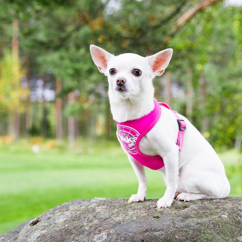 Rukka Mini Comfort Flash -valjas, pinkki