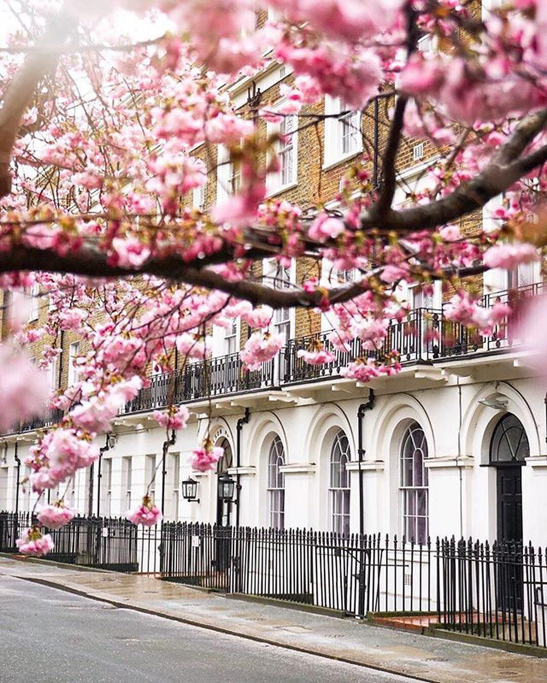 So You Re Finally In London You Ve Scheduled Your Days To The Minute You Re Racing Between Tube Stations Dod London City Guide London Dreams Beautiful London