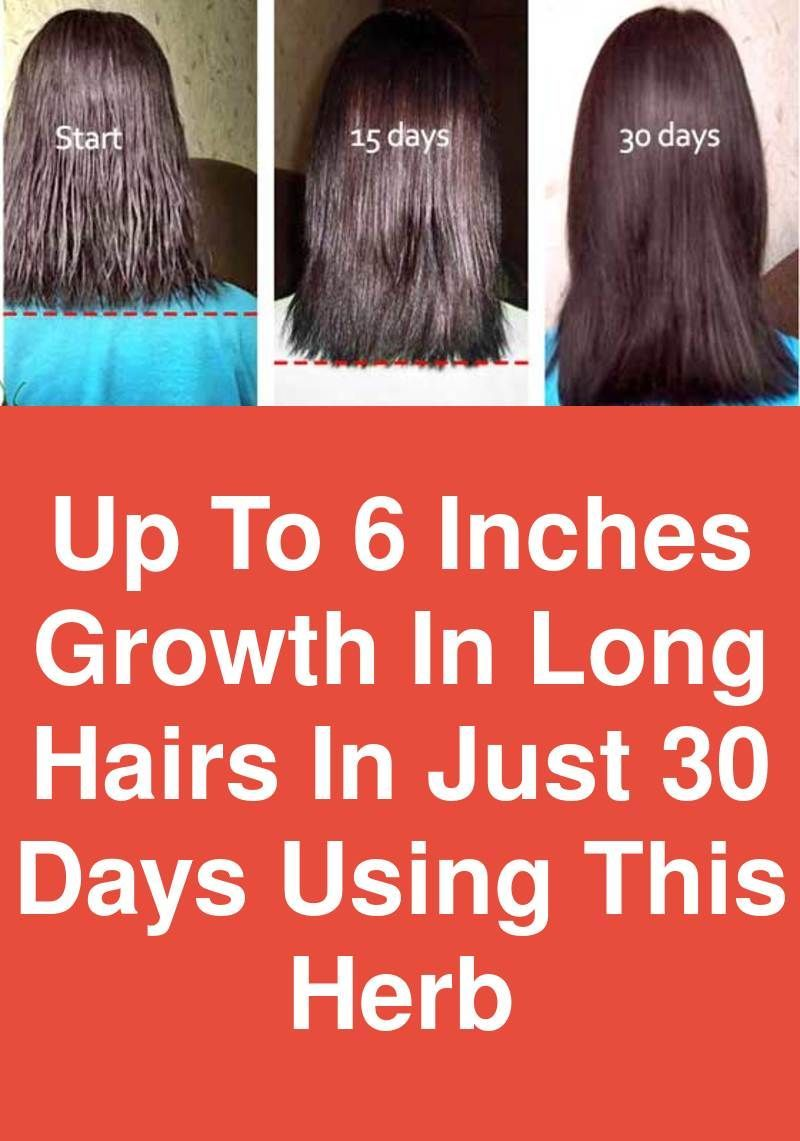 Up To 6 Inches Growth In Long Hairs In Just 30 Days Using This Herb Isn T It Amazing Up To 6 Inch Hair Growing Formula Make Hair Grow Faster Long Hair Styles