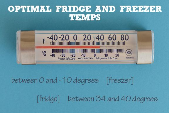 48+ Whats the temperature in a refrigerator information