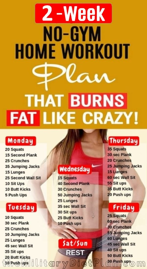 2 Week Workout Plan At Home Which Will Provide You A Perfect Body Shape That You Desire Let S D At Home Workout Plan Best Workout Routine Weekly Workout Plans