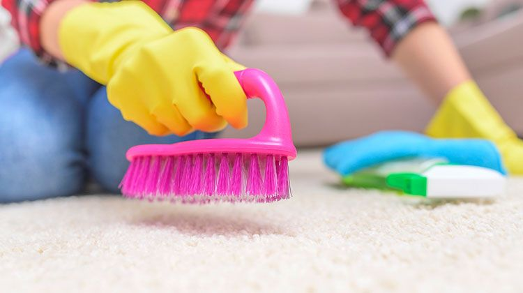 how to remove coffee stains from carpet baking soda