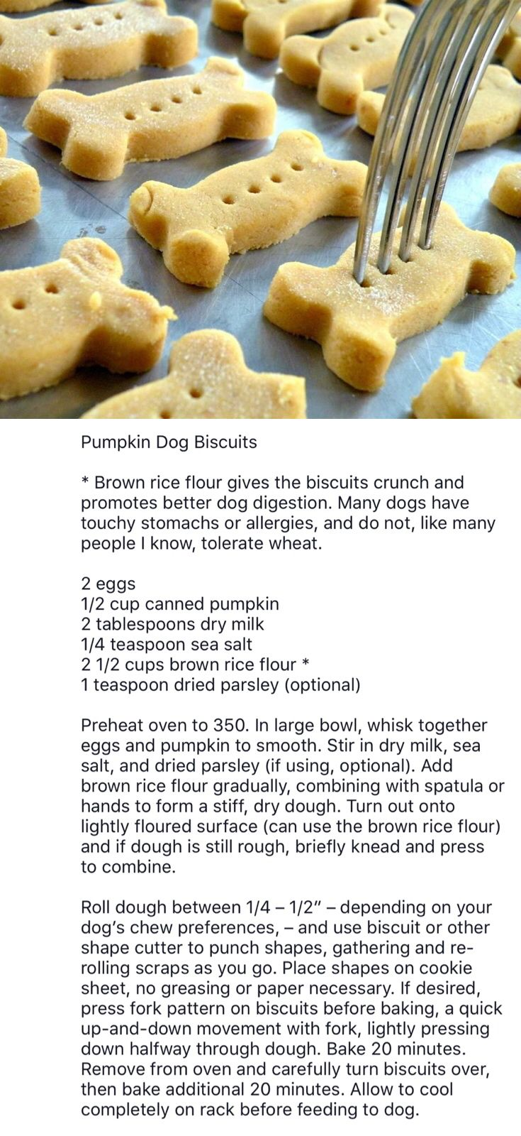 Diy Pumpkin Dog Biscuits With Brown Rice Flour For Ease In