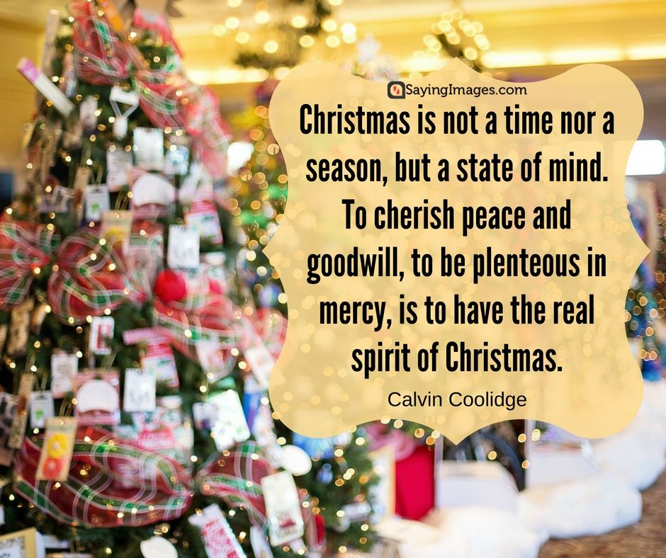 Best christmas cards messages quotes wishes images 2017 best christmas cards messages quotes wishes images 2016 sayingimages bestchristmascards merrychristmas m4hsunfo