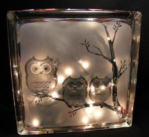 8x8x3 Glass Block Light With Owl Images Hand Sandblasted Into The