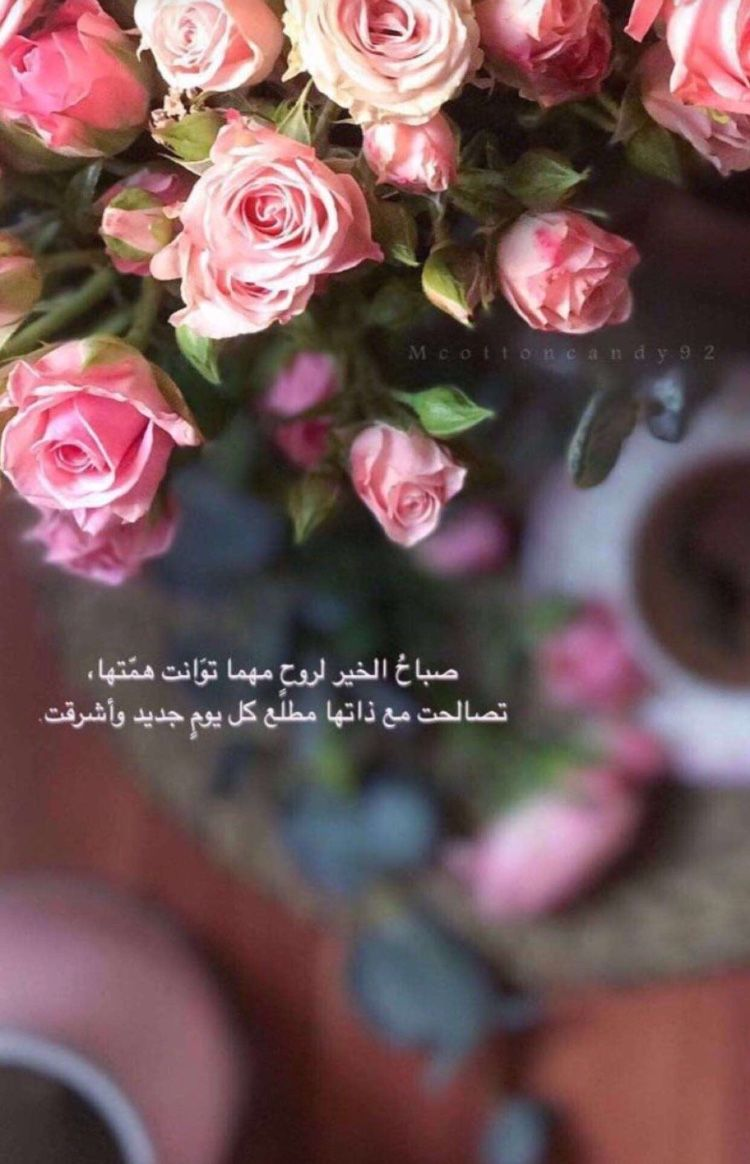 Pin By Jasmin Yousef On كلمات أحببتها Moon And Star Quotes Arabic Quotes Flower Background Iphone