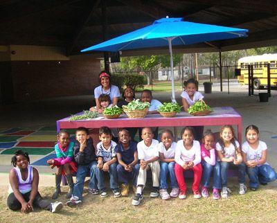 School Garden Resource Center | Whole Kids Foundation- Grant Op