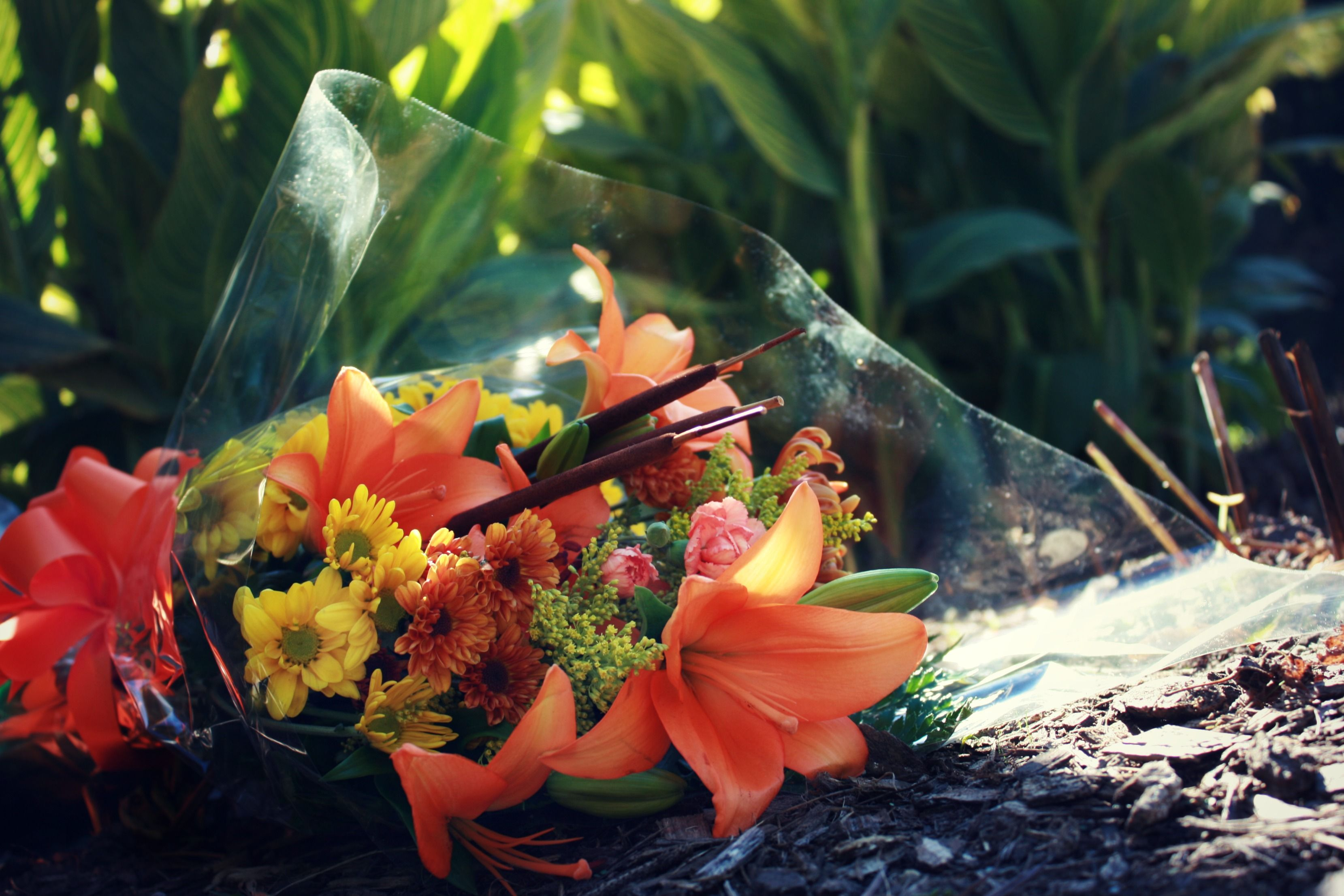 www.readysetpropose.com or 951-400-5683 for all your proposal needs in the Midwest and West Coast!   Proposal flowers, autumn flowers, autumn, flowers, bouquet, orange flowers, orange bouquet, cat tails