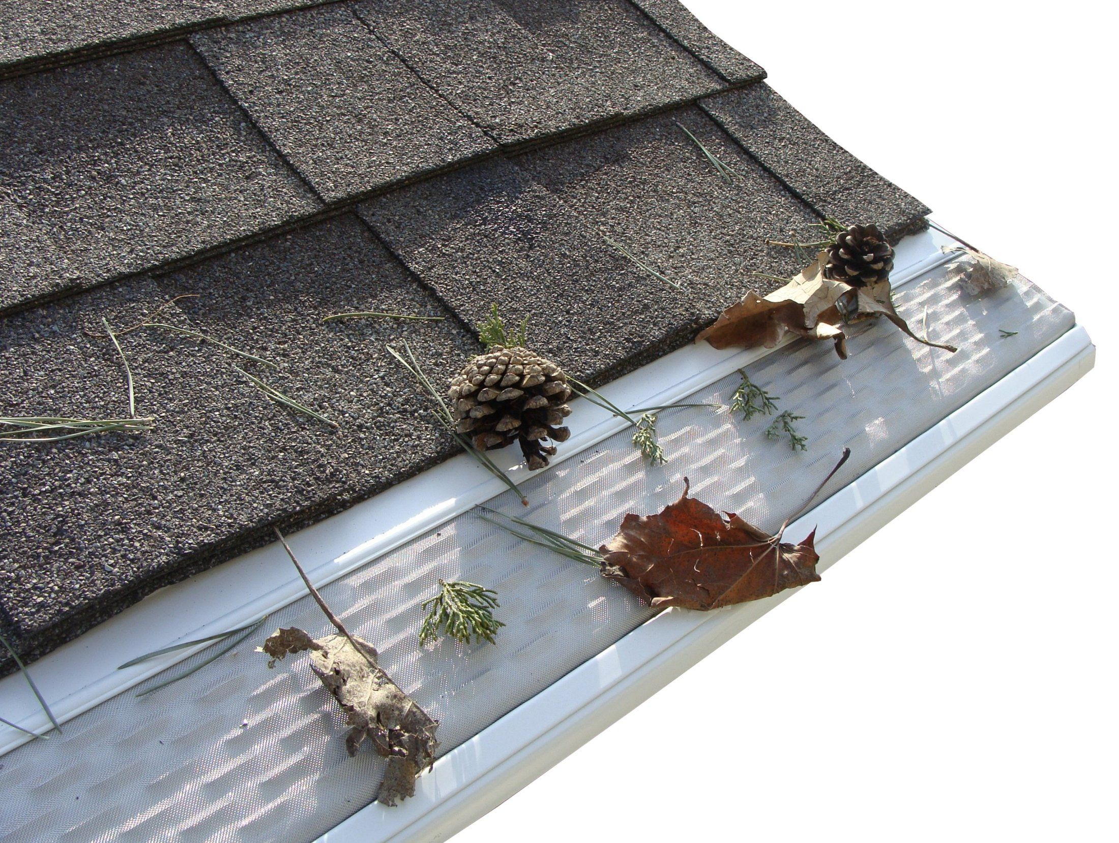 Professional Gutter And Downspout Cleaning Chicago And Suburbs Gutter Guard Gutter Gutters