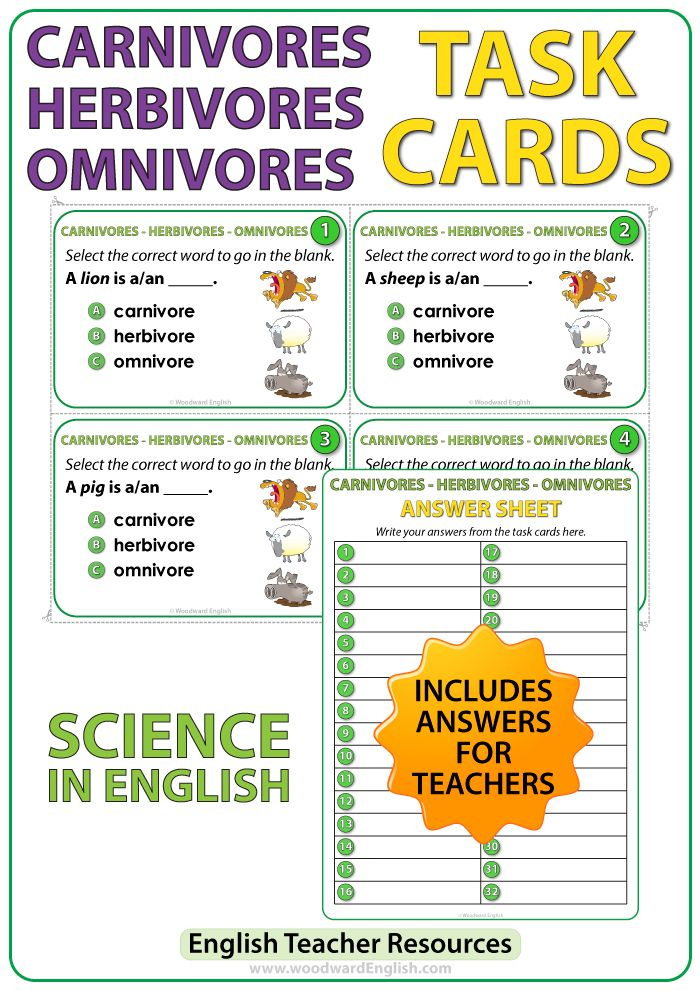 32 Science task cards to help students learn the