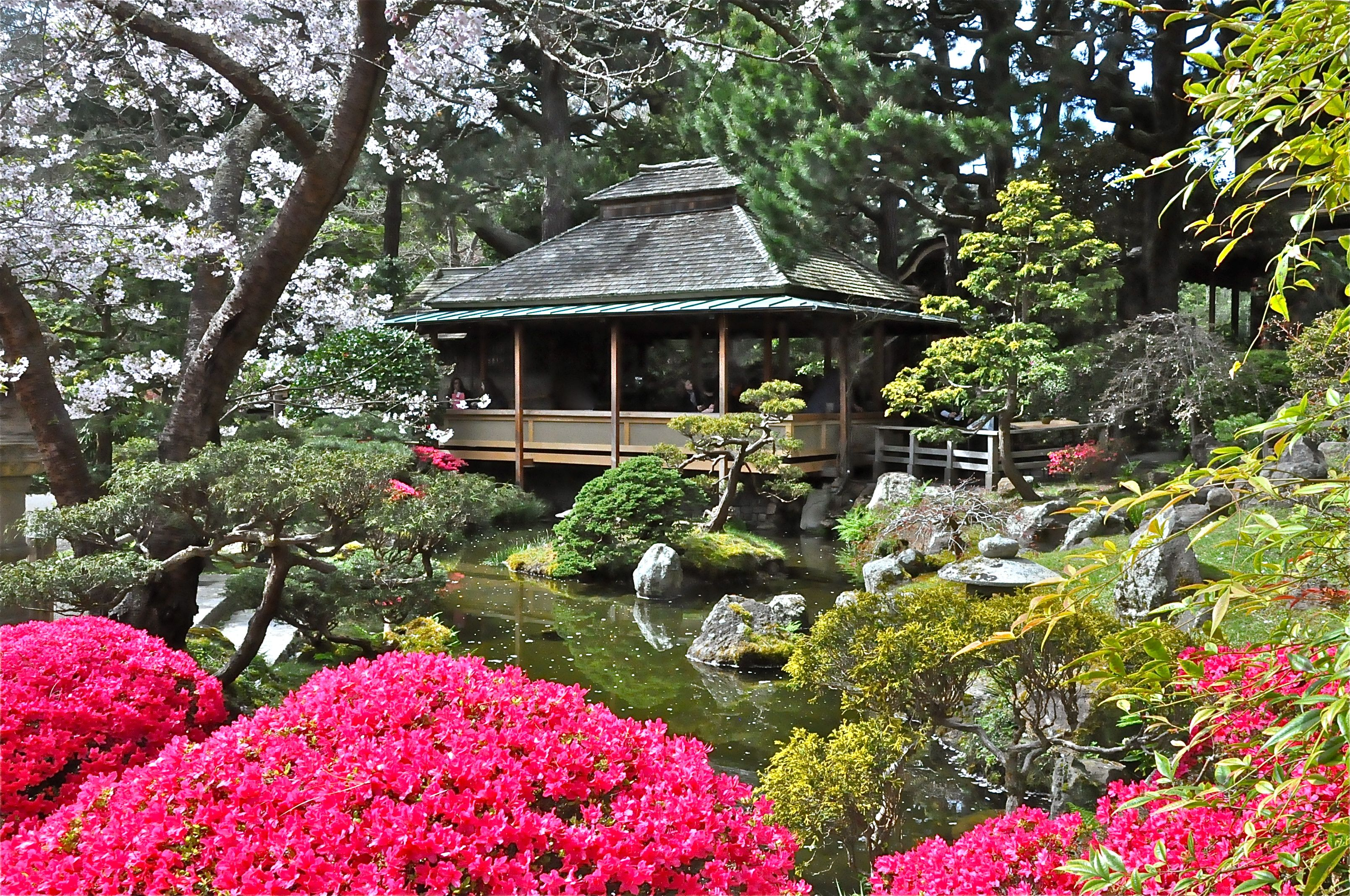 Japanese tea garden golden gate park san francisco ca - Japanese tea garden san francisco ...