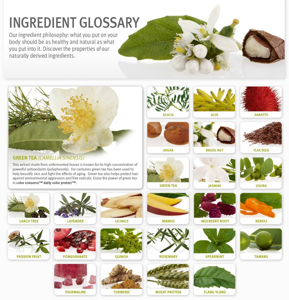 Our ingredient philosophy What you put on your body