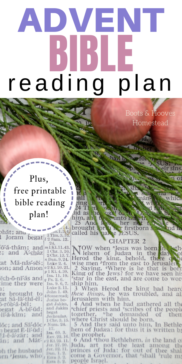 It's just a photo of Declarative Free Printable Advent Bible Study