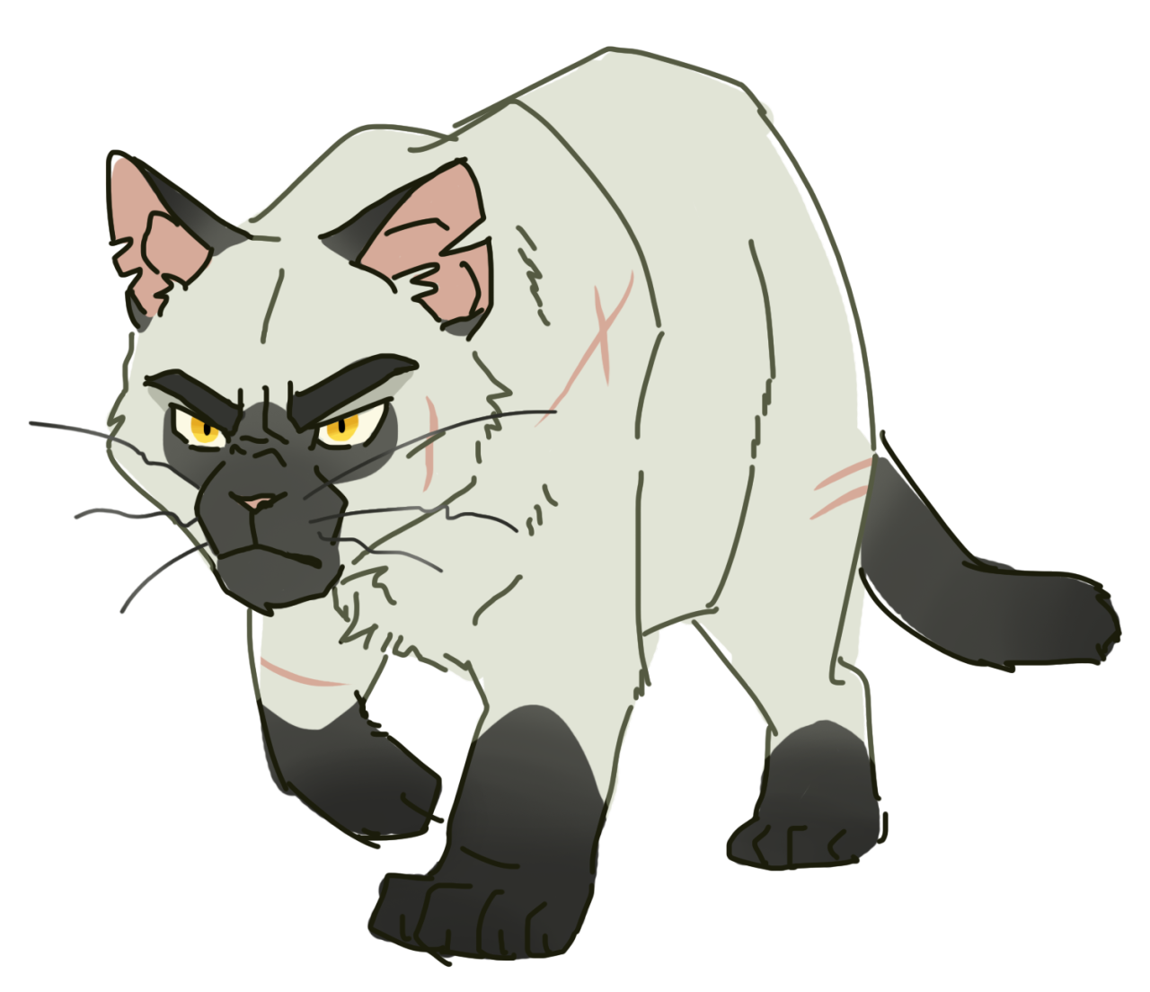 100 Warrior Cats Challenge 4 Blackstar Feel Free To Use My