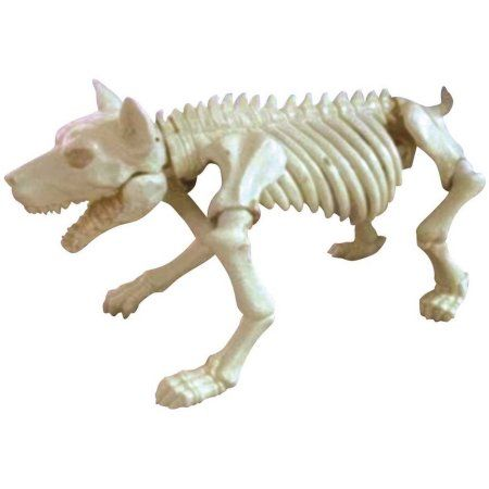 Bone Skeleton Dog Prop Halloween Decoration Products In