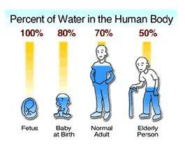 """Képtalálat a következőre: """"water in the body percentage"""""""