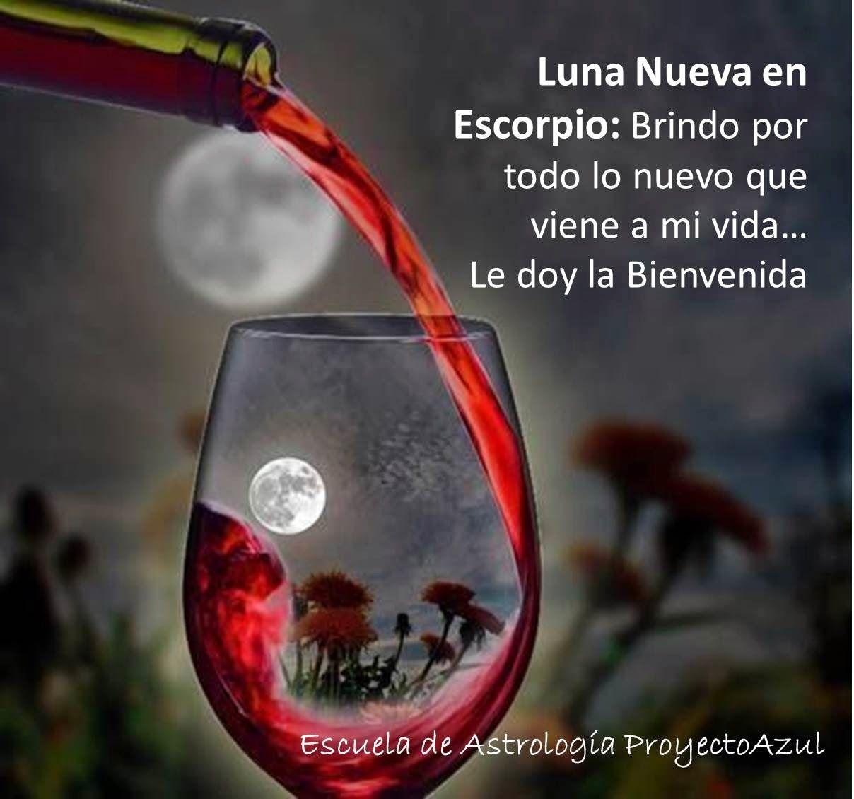 Mirando El Cielo Y El Alma Jueves 23 De Octubre De 2014 Arte De Vino Copas De Vino Luz De La Luna