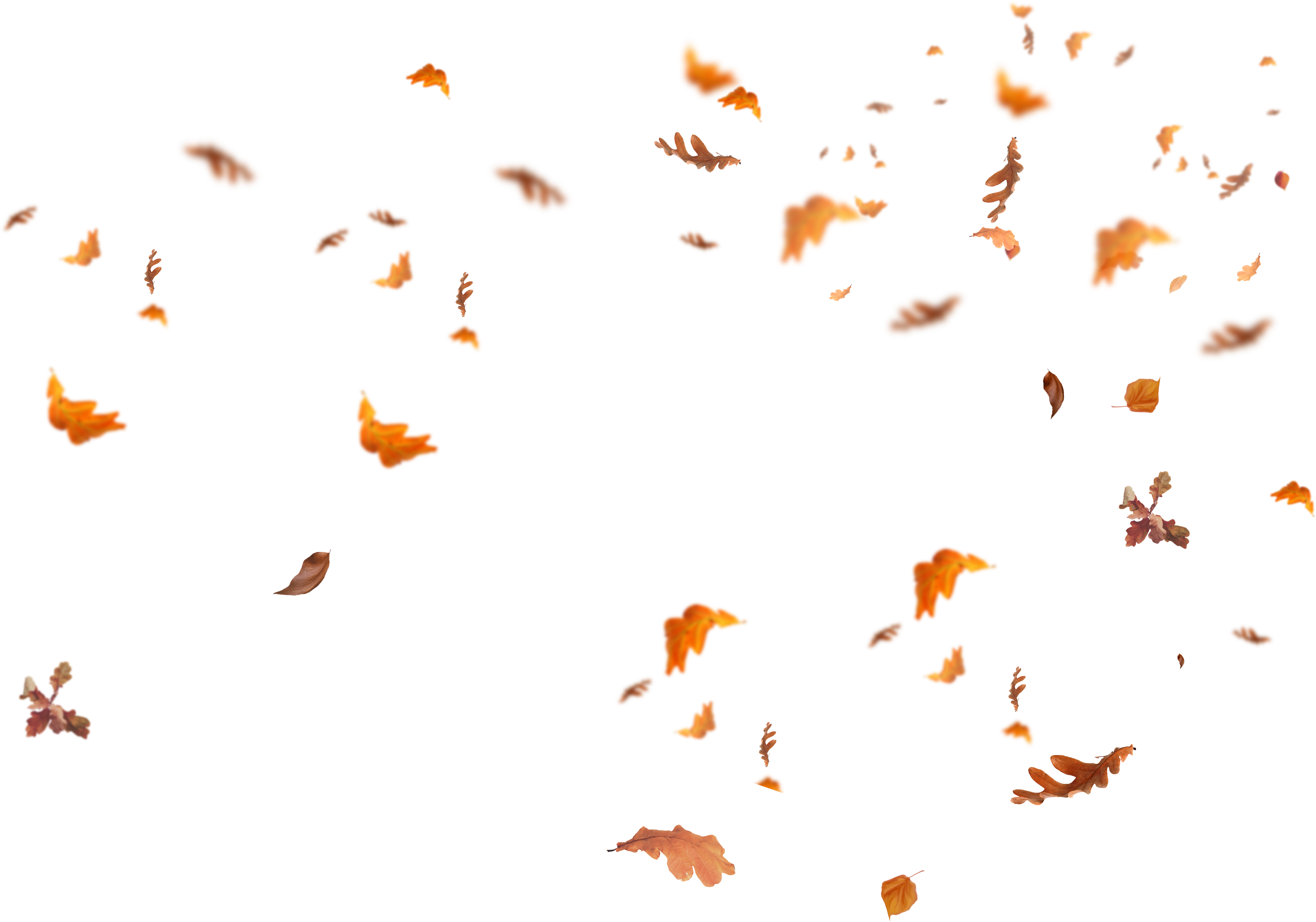 falling autumn leaves png images download Check more at ...