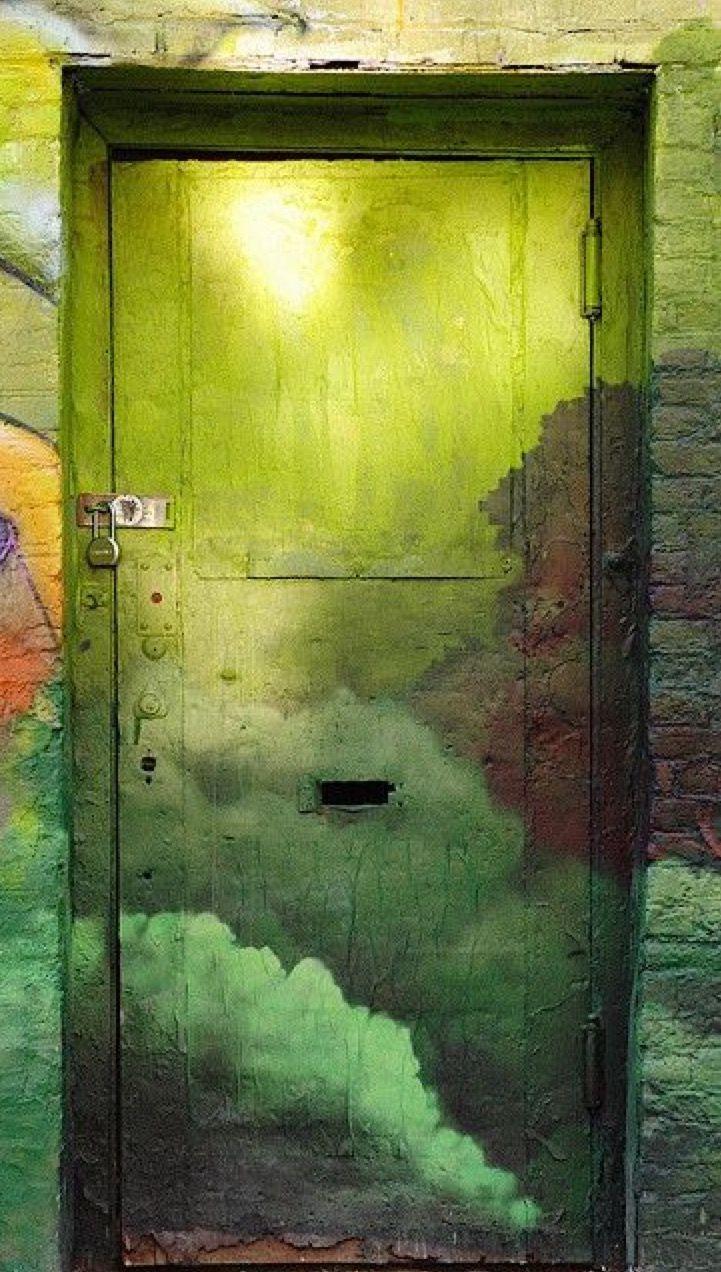 Dipingere Le Porte Di Casa brooklyn, new york, etats-unis #photo #porte #door #voyage