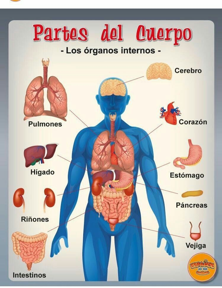Pin By Morph On Spanish Pinterest Spanish Learn Spanish And