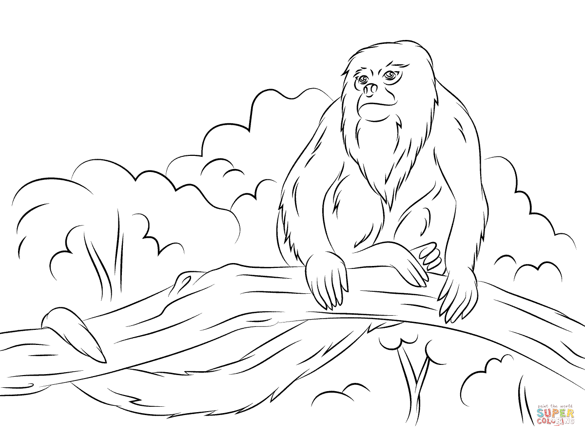 Howler monkey sitting tree coloring pages | Coloring For Kids in ...