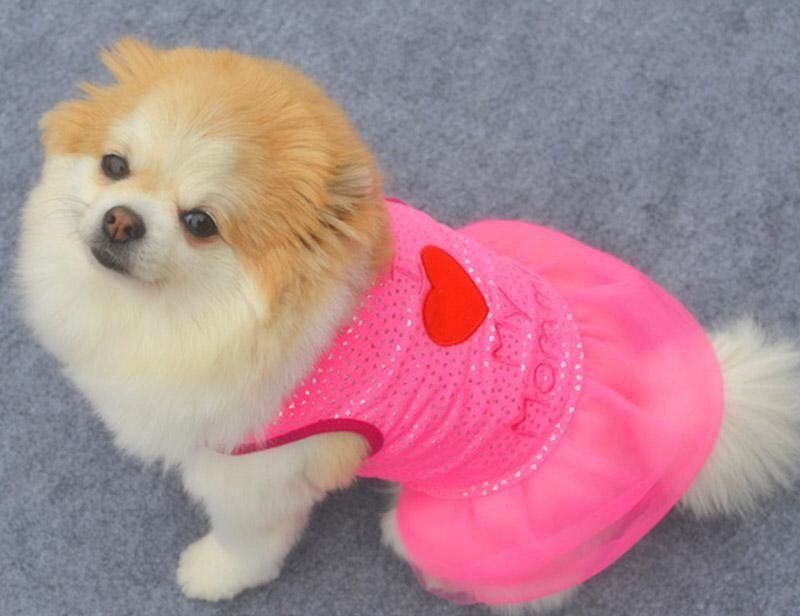 b0cbd33d1364f Love Mommy Spring Skirts | Hot This Summer! | Spring skirts, Pet ...