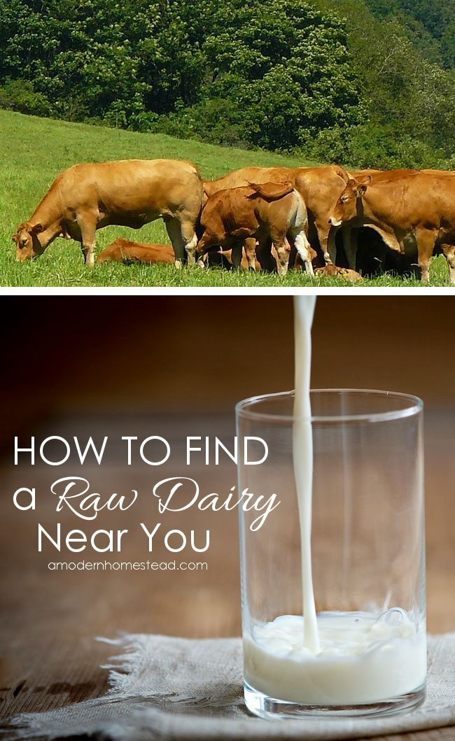 Find Raw Milk Near You | Real food recipes, Homemade ...