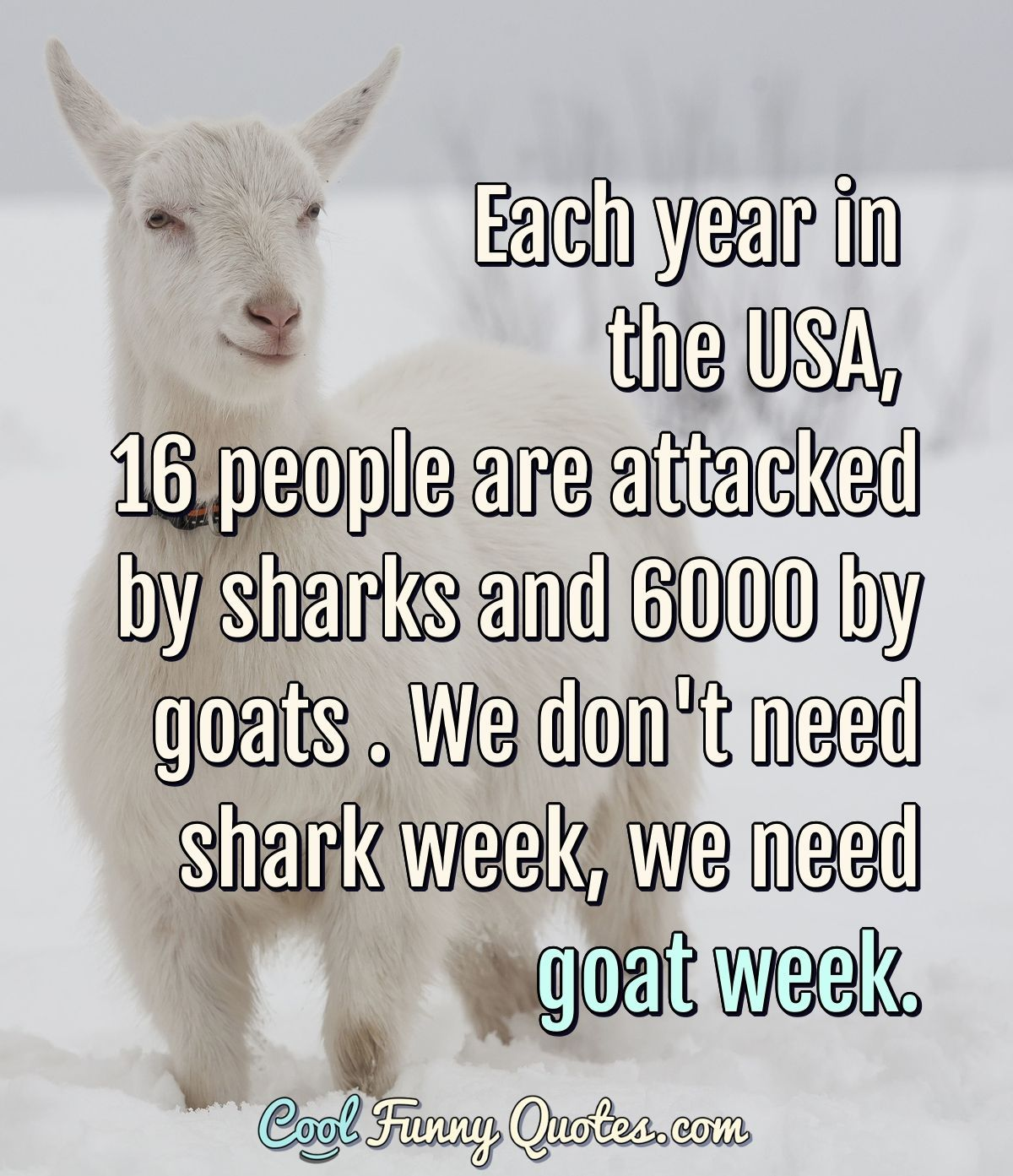Funny Quote Funny Quotes Goat Quote John Green Quotes