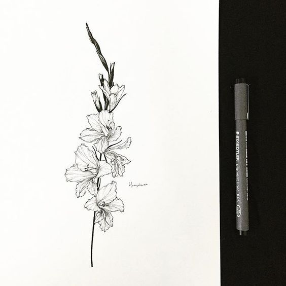 2a1b6d2b9 gladiolus drawing for a tattoo. gladiolus 다섯개의 꽃 Tattooist Hongdam Seoul  Korea | INK .