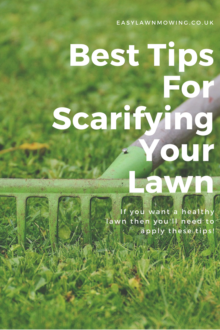 Learn How To Clear Your Lawn Of Thatch Weeds And Moss Properly With All Of My Best Lawn Scarification Tips Lawncareadvice Lawn Weeds In Lawn Diy Lawn