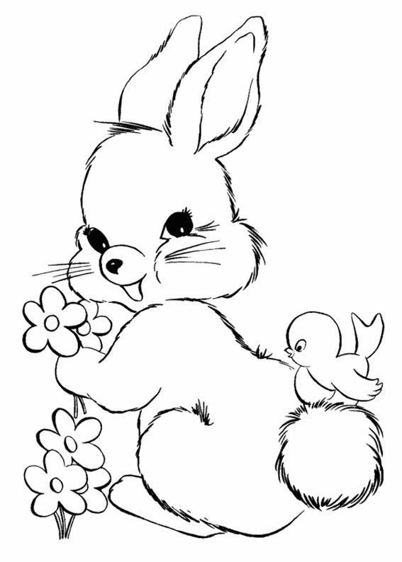 Disegni Conigli Da Colorare.45 Disegni Di Conigli Da Colorare Pianetabambini It Disegno Coniglio Disegno Coniglietto Disegni Di Uccelli